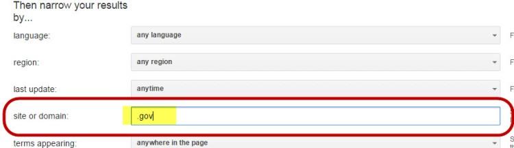 Google domain filter