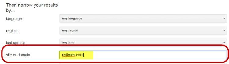Google Site Filter